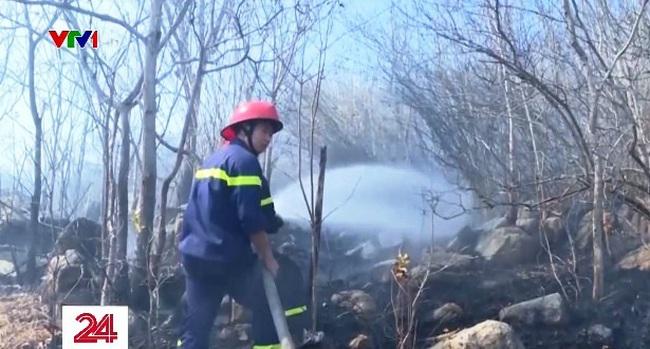 Bà Rịa - Vũng Tàu: Cháy rừng trên núi Minh Đạm - ảnh 1