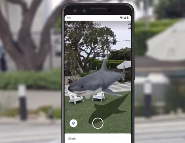 Thăm vườn bách thú 3D trong mùa dịch COVID-19 chỉ với Google Search - ảnh 3