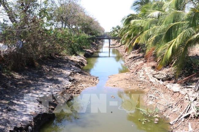 Đợt xâm nhập mặn mới tại Đồng bằng sông Cửu Long - ảnh 2