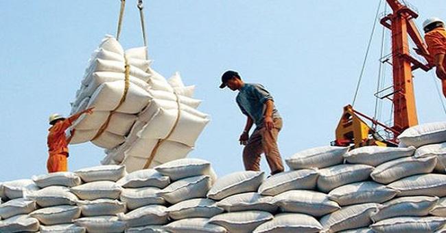 Doanh nghiệp xù hợp đồng gạo dự trữ quốc gia vẫn được tái đấu thầu - ảnh 3