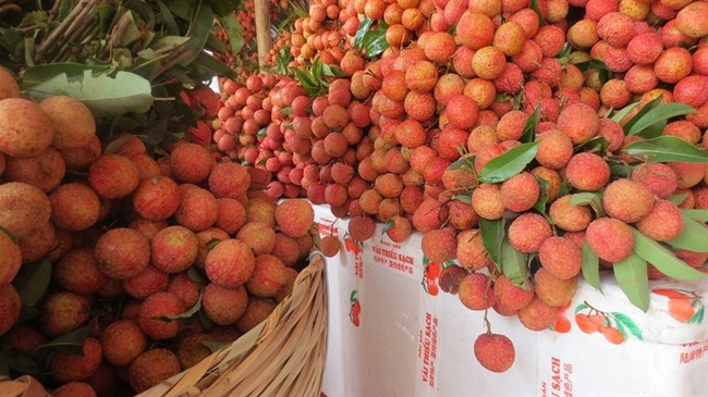 Lychee is one of Vietnam's main exports to China.