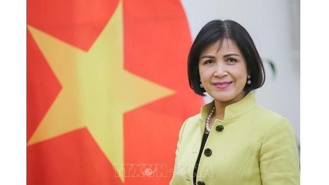 Ambassador Le Thi Tuyet Mai - Permanent Representative of Vietnam to the UN, the World Trade Organisation (WTO) and other international organisations in Geneva, Switzerland (Photo: VNA)