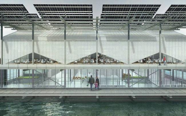 Ghé thăm trang trại gà khổng lồ trên nước tại Hà Lan - ảnh 5