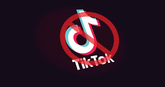 Mối lo ngại bảo mật thông tin từ ứng dụng mạng xã hội TikTok - ảnh 3