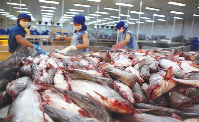 Doanh nghiệp tự chứng nhận xuất xứ hàng hóa xuất khẩu sang EU - ảnh 3