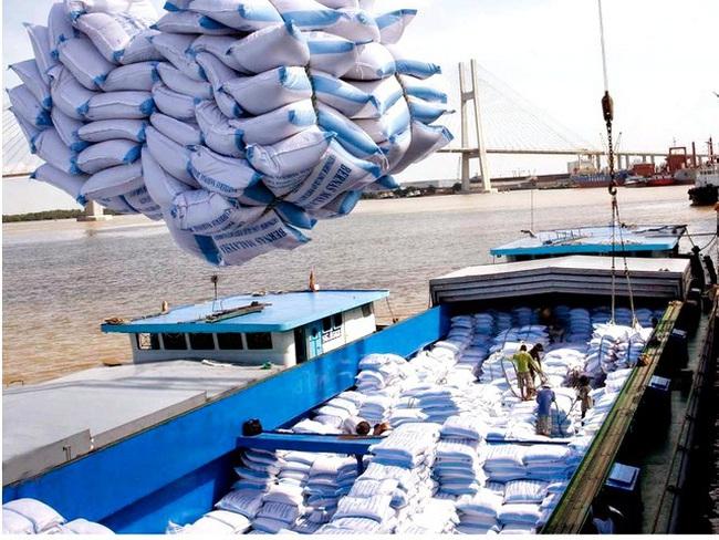 Giá gạo xuất khẩu Việt Nam vươn lên dẫn đầu thế giới - ảnh 3