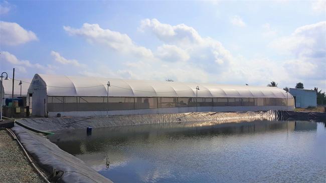 Giải pháp công nghệ nuôi thâm canh tiết kiệm nước và bền vững - ảnh 2
