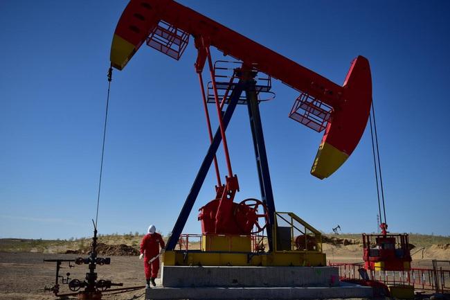 IEA và OPEC hạ dự báo nhu cầu dầu thế giới năm 2020 - ảnh 3