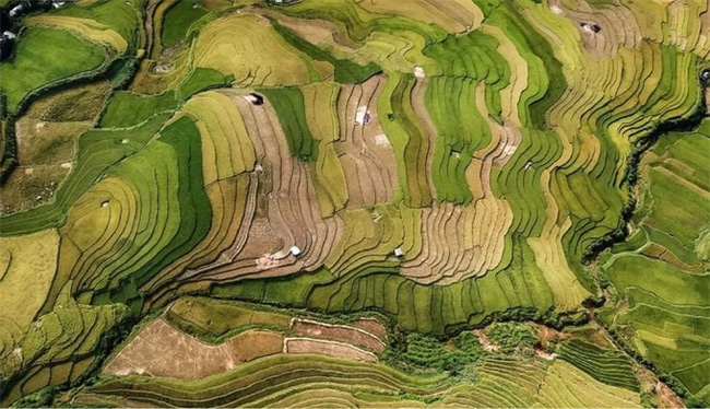 A work by photographer Vu Manh Cuong.