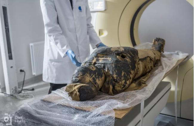 Ai Cập phát hiện xác ướp mang thai đầu tiên trên thế giới - ảnh 2