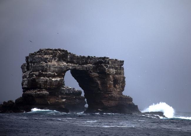 Vòm đá tự nhiên Darwin's Arch nổi tiếng đã sụp đổ - ảnh 3