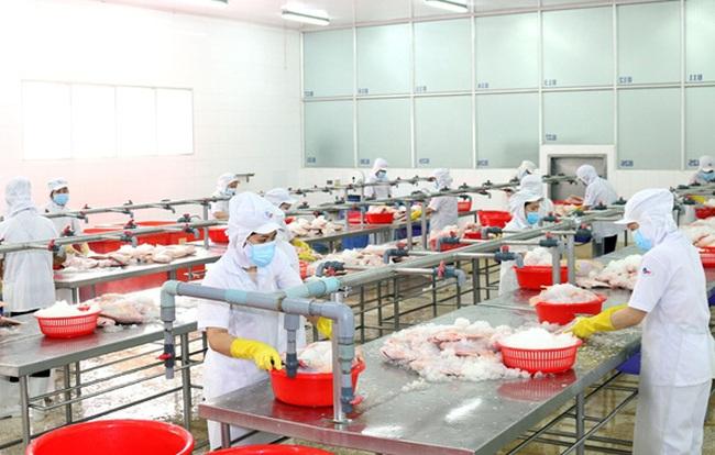 Gần 10.000 doanh nghiệp TP Hồ Chí Minh đóng cửa vì COVID-19 - ảnh 2