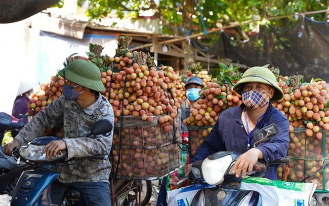 Hơn 98.000 tấn vải thiều Bắc Giang đã được tiêu thụ - ảnh 2