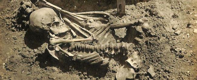 Phát hiện hài cốt của nạn nhân bị cá mập tấn công có niên đại 3.000 năm - ảnh 3