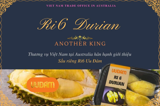 Uu Dam Australia posts its successful distribution of 80 tonnes of frozen Ri6 durians, with the company soon receiving more 49 tonnes. (Illustrative image/Photo: BCT)