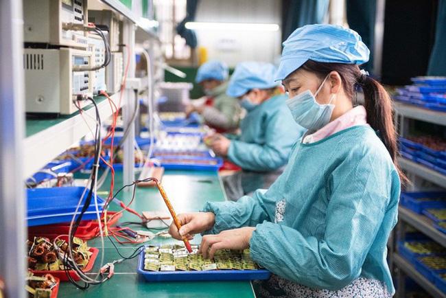 TP Hồ Chí Minh sẽ xây dựng bộ tiêu chí để khôi phục sản xuất - ảnh 2