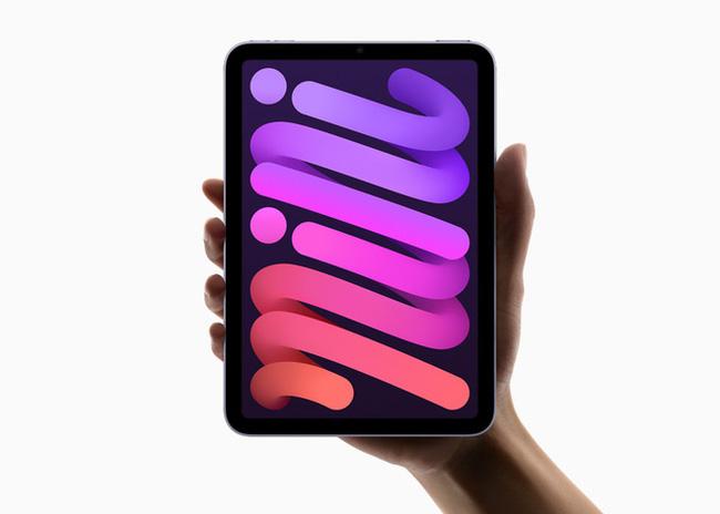 iPad mini 6 dính lỗi màn hình ngay khi vừa ra mắt - ảnh 1
