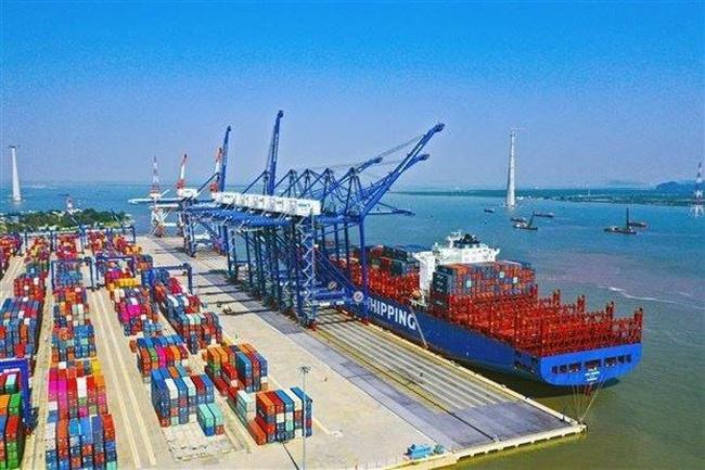Bộ GTVT lập 2 tổ công tác tổng rà soát giá dịch vụ hàng hải - ảnh 2