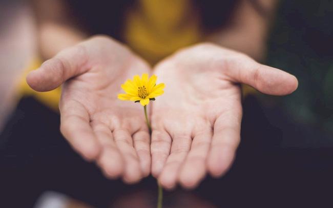 Cách thực hành chánh niệm giúp giảm stress hàng ngày - ảnh 1