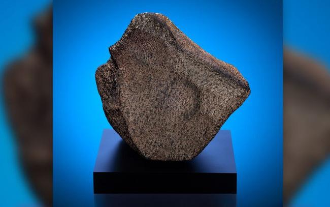Khối thiên thạch hơn 100 triệu năm tuổi được đưa ra trưng bày - ảnh 1