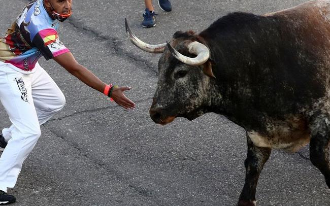 Lễ hội chạy đua bò tót lần đầu quay lại sau đại dịch ở Tây Ban Nha - ảnh 4