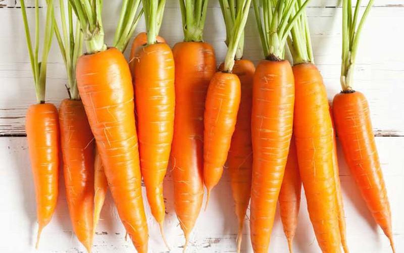Cà rốt – vị thuốc bổ ích | VTV.VN