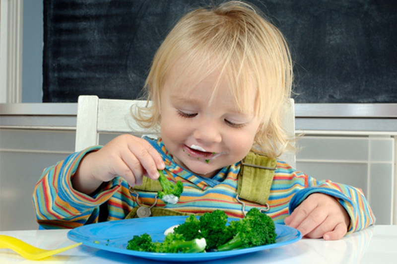 """Kết quả hình ảnh cho đảm bảo dinh dưỡng cho trẻ"""""""
