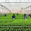 Loans for high-tech agriculture development