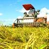 Vietnam has high import-export volumes
