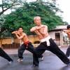 Vietnamese martial arts influence in Belgium