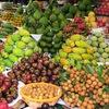 Export potential of Vietnamese fruits