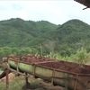 Management of natural resource exploitation tightens in Quang Nam