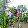 Ben Tre offers tours showcasing climate change impact