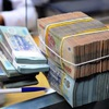 Vietnam's credit growth hits 6.16% in 5 months