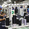 Enhancing Vietnamese labor productivity