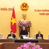 Vietnam's ministers to be questioned on ethnic policies and crime