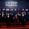 CPTPP expected to boost Vietnam-Chile economic ties