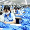 CPTPP could be windfall for Vietnam textile industry