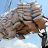 Rice exports reach 5.2 million tonnes in ten months