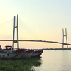 Tourism in the Mekong Delta shows good growth