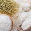 Regulations on use of the Vietnam rice brand