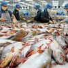 EC starts inspection of Vietnam's fisheries