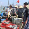 Measures to prevent illegal fishing