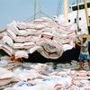 Rice exports surge