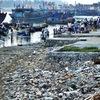 Marine plastic pollution requires international cooperation