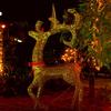 Christmas spirit in full swing in Hanoi
