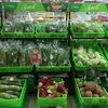 Vingroup's retail and agriculture units to merge with Masan