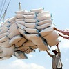 Rice export to be controlled this year