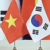 Association contributes to consolidating Vietnam-RoK relations