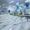 Tra fish exports reach record high